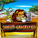 wild gambler slot play free US