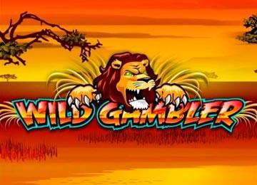Play Wild Gambler Slot Game
