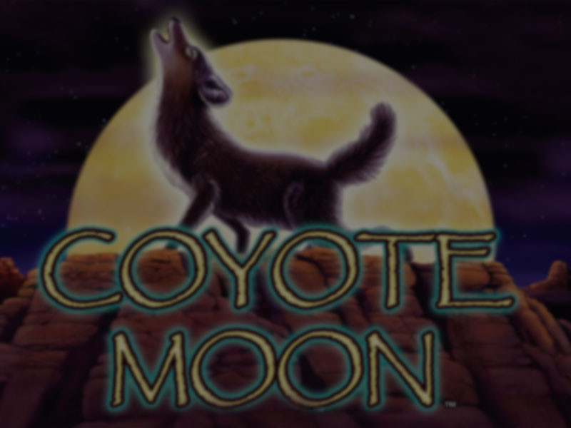 Play Coyote Moon Now